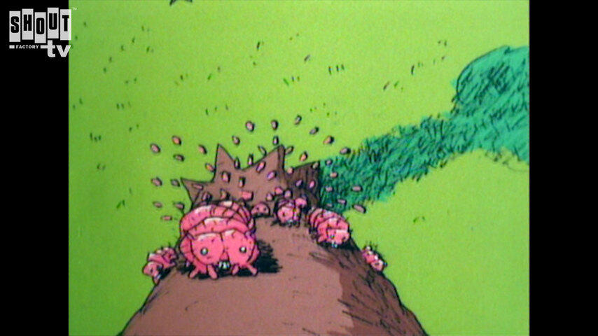 Plymptoons: The Exciting Life Of A Tree