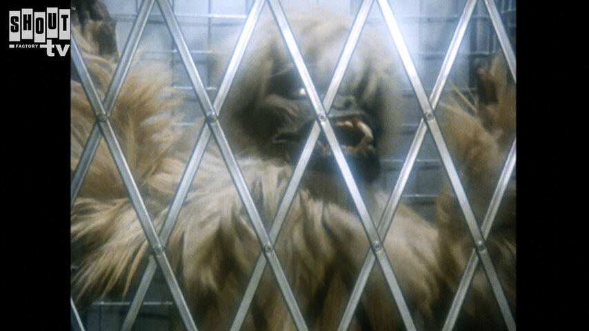 Terrahawks: S3 E11 - Space Giant