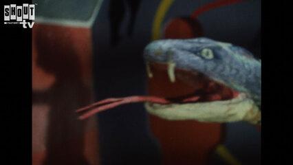 Kamen Rider: S1 E9 - The Terrifying Cobra Man
