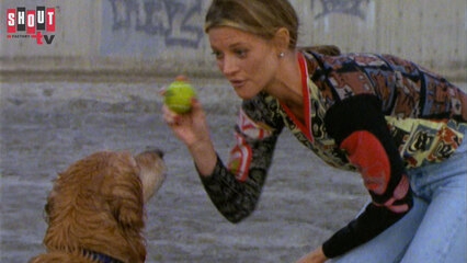 Silk Stalkings: S7 E22 - Genius