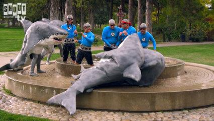 The Aquabats! Super Show!: S3 E2 - The Shark Fighter!