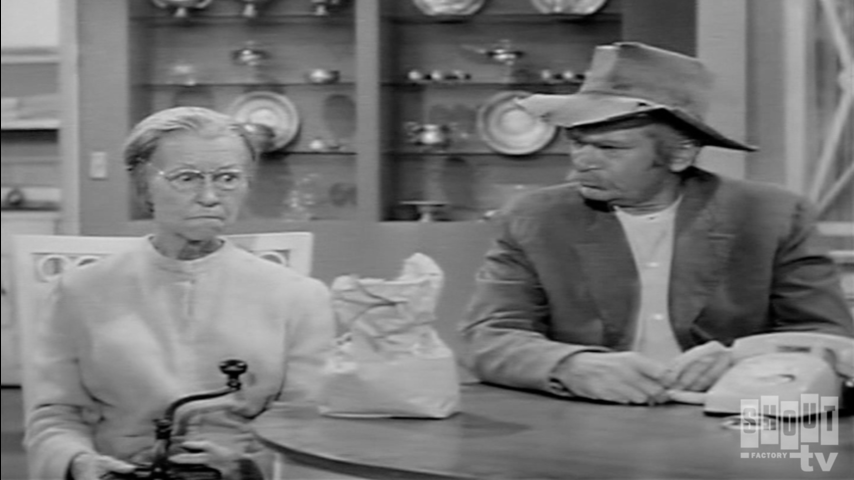 The Beverly Hillbillies: S2 E5 - The Clampett Look