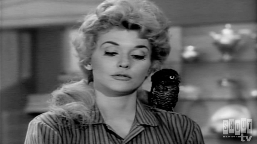The Beverly Hillbillies: S2 E11 - The Garden Party