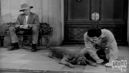 The Beverly Hillbillies: S2 E16 - The Giant Jackrabbit